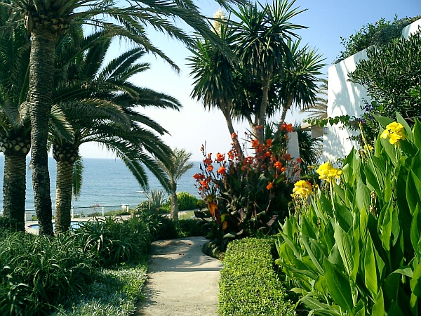 A cosy path at Costa-Natura with palms and lovely flowers