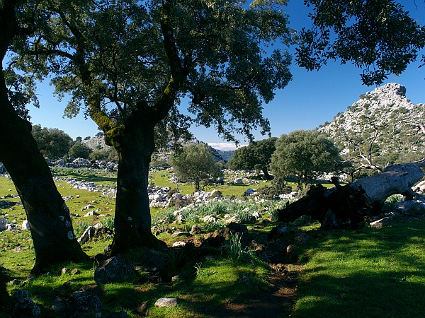 Grazalema to Benaocaz walk picture 2