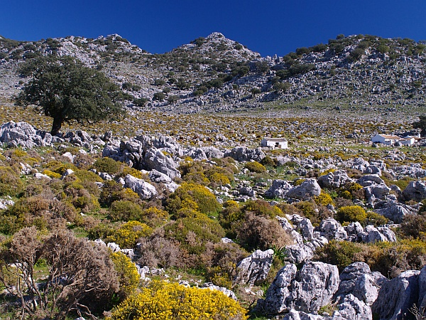 Grazalema to Benaocaz walk - a desolate farm