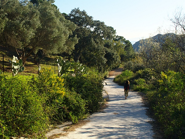 Walking near Costa-Natura on the circular route at Casares