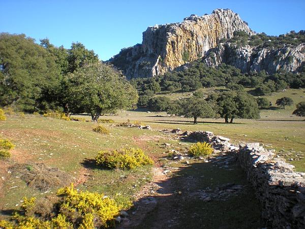 Walking near Costa Natura picture 4